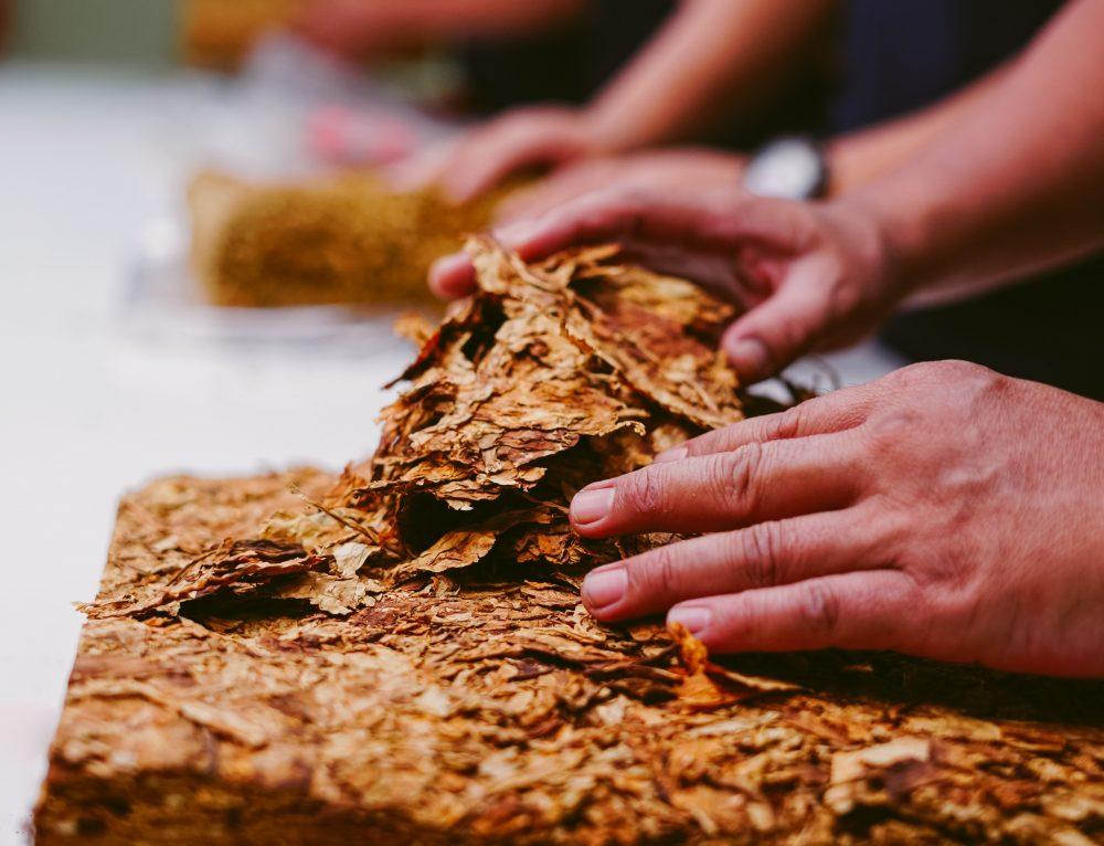 Nuevo Procesos en VUCE: MSP – Tabaco